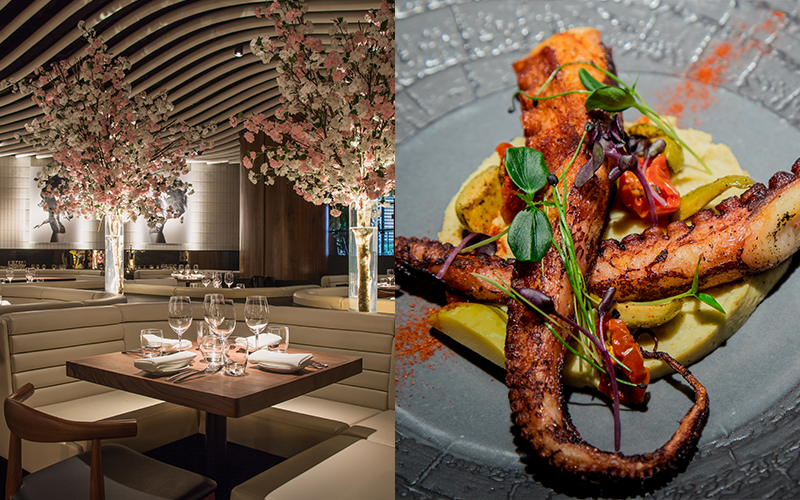 Dinner review: STK JBR, Rixos Premium Dubai