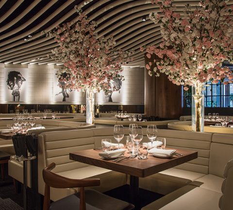 STK launches new Thursday evening brunch