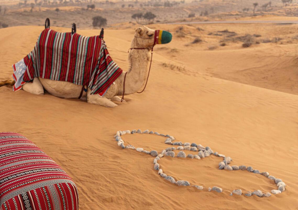 The Ritz-Carlton, Al Wadi Desert